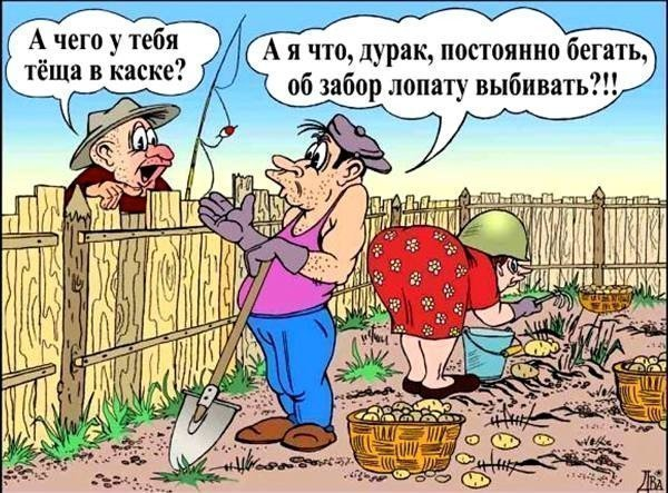 dachniy_yumor_2.jpg