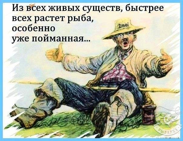 PCy_kwZSavk.jpg